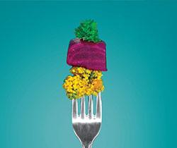 kuszkusz dietetika tanácsadás