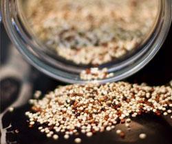 quinoa dietetika tanácsadás
